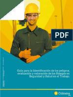 Guía virtual IPEVRv2.pdf