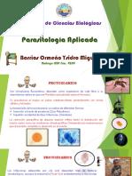 PARASITOLOGIA APLICADA DOS CLASIFICACION.pptx