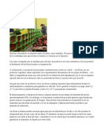 logistica (3).doc