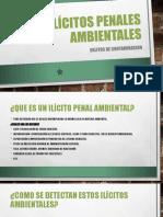 Ilícitos penales ambientales