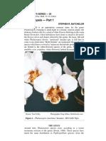 Beginner Orchid.pdf