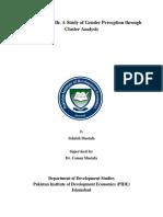 Skill Gap in Sindh A Study of Gender Perception through Cluster Analysis Cluster Analysis - Sehrish Mustafa.pdf