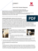 FINAL_Newborn Calves & Colostrum Management