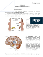 Unidad 6 Sistema Neuroendocrino