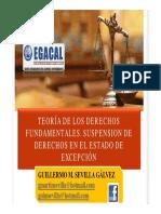 Cap Guillermo Sevilla - Ddff Egacal -Estado Excepcion