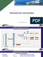 MODULO_2_1_PROCESOS_DEL_GAS.pptx