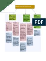 CLASIFICACION CUENTAS CONTABLES.pdf
