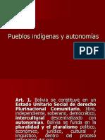 Pueblos indígenas en la legislación boliviana