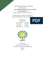 Laporan kimia anorganik dalam bidang pangan, energi dan lingkungan
