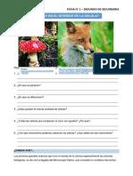 Ficha de reforzamiento ciencia y ambiente segundo de secundaria