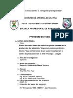 Perfil de Tesis de Aji Rocoto.docx