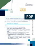 Amef de Reversa CD 1 (1)