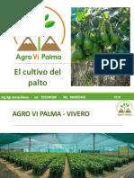 AGRO VI PALMA CORREJIDO.pptx