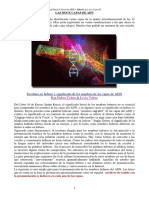 adn12capas1.pdf