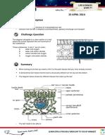 LXL Gr10LifeSciences Organs-The Leaf 23April2014