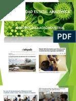 1. introd. MICROBIOLOGIA.pptx
