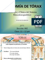 anatomadetrax-140921170446-phpapp01.pdf