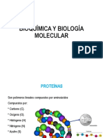 Tema. Aminoácidos y enzimas.ppt