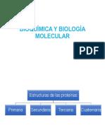 Tema. Estructura de Proteínas y Enzimas