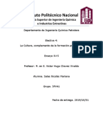 Electiva IV (Ensayo 5) SNM 3PV41