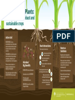 plant - sustainable crops