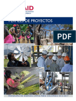 USAID CCEP 2 - Perfiles de Proyectos (1)
