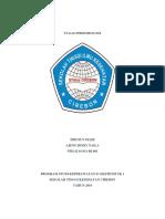 Distribusi Epidemiologi Penyakit Diare Di Wilayah Kerja Rsia Pala Raya