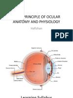 Kuliah RO - Basic Anatomy & Physiology