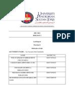 lab report practical 2 sbu 3013.docx