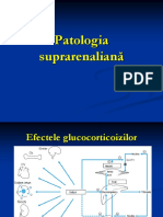 Endocrine-suprarenale.ppt.ppt