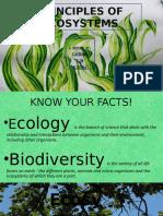 Principles of Ecosystem
