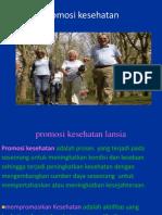 Health Promotion Fiks (1)