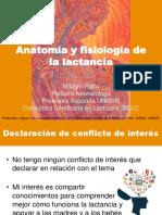 2018 Anatomía y Fisiología de La LM MINSA
