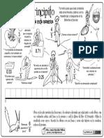 02-El-Principito-y-la-recta-numérica-2.pdf
