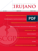 Revista-cirujano-2019 Sindrome Intestino Corto