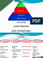 Audit Process PDF-converted