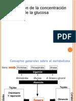 Regulacion de la Glucosa
