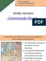 Aula 3 - Comunicação Neural