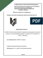 diplom_plotnikova_trz-08-1.pdf