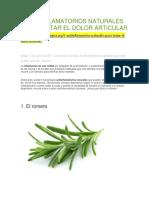 Antiinflamatorios Naturales Para Tratar El Dolor Articular