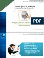 PROGRAMA BÁSICO DE FORMACIÓN para auditores y abogados.pdf