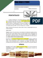 Aula Sobre Pentateuco/Genesis - Conteúdo