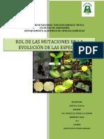 Rol de Las Mutaciones en La Evolución de Las Especies