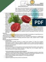 Fisiopatología Unidad 2