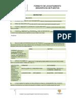 instructivo - DESCRIPCION DEL PERFIL.pdf