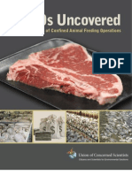 Cafos Uncovered