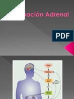 Evaluación Adrenal