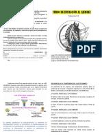 Diptico ajedrez.pdf