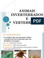 Animais Invertebrdos e Vertebrados