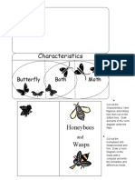 Science Insect Venn Diagram booklets